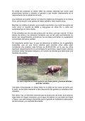 CÓMO OBTENER LECHE DE BUENA CALIDAD - Agronet - Page 5