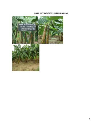 dasip interventions in rural areas - Ministry Of Agriculture, Food and ...