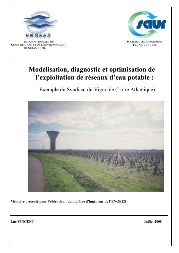 PDF (Rapport) - ENGEES