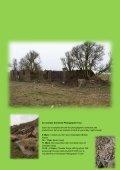 Somerset-Tours - Page 6
