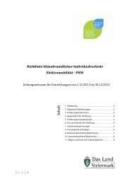 Richtlinie klimafreundlicher Individualverkehr Elektromobilität - PKW