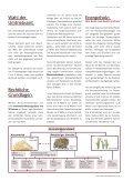 Kurzumtrieb - Energieholz vom Acker - Biomassehöfe Stmk - Seite 3
