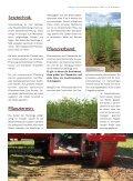 Kurzumtrieb - Energieholz vom Acker - Biomassehöfe Stmk - Seite 5