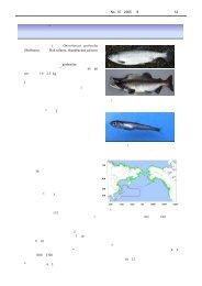 サケ科魚類のプロファイル-7 カラフトマス - 水産総合研究センター
