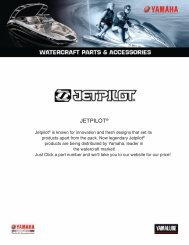to download the 2010 jet pilot catalog
