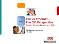 Carrier Ethernet Service Levels and SLAs