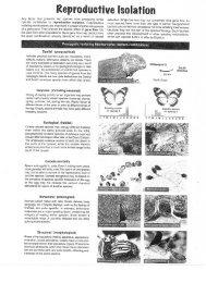 Origin of species explained103