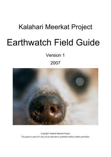 DeerCam - Kalahari Meerkats Cam