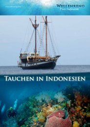 Tauchen in Indonesien