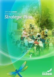 Strategic Plan - Darwin City Council