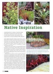 Native Inspiration