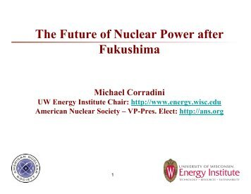 The Future of Nuclear Power after Fukushima - SFEN