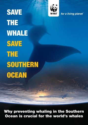 Save the Whale, Save the Southern Ocean PDF - wwf - Australia