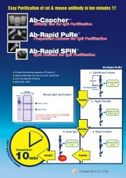 【Ab-Capcher™】 Prepacked Column for Purification of IgG