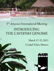download PDF. - Association for Mexican Cave Studies