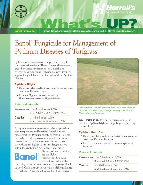 Banol Fungicide for Management of Pythium     - Backed by Bayer