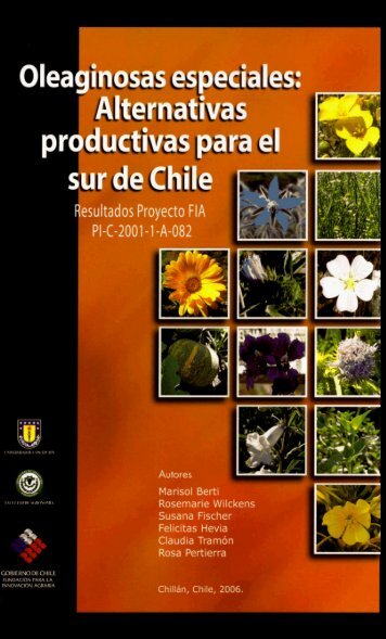 Oleaginosas especiales alternativas productivas para el Sur de Chile