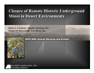 Closure of Remote Historic Underground Mines in ... - SRK Consulting