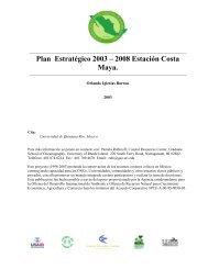 Plan Estratégico 2003 – 2008 Estación Costa Maya. - Coastal ...