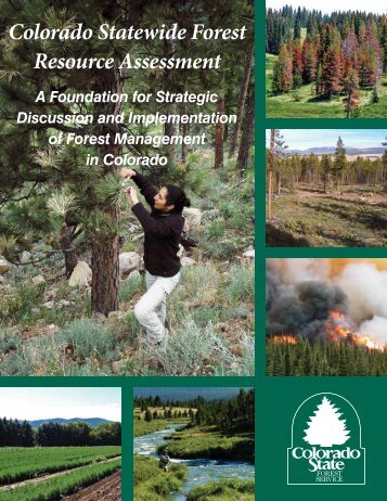 Colorado Statewide Forest Resource Assessment