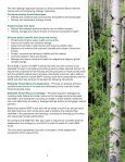 Colorado Statewide Forest Resource Assessment - Page 7