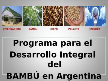 Programa_BAMBU