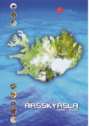 Skýrslan - Samtök iðnaðarins