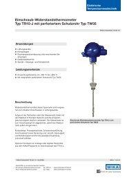 Einschraub-Widerstandsthermometer Typ TR10-J mit perforiertem ...