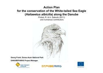 White-tailed Eagle Action Plan - DANUBEPARKS