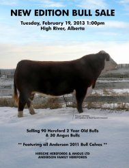 Small PDF - Hirsche Herefords & Angus