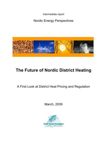 The Future of Nordic District Heating - Nordicenergyperspectives.org