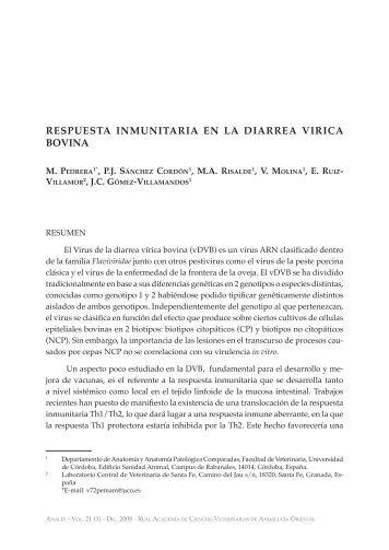 Pedrera, M., Sánchez Cordón, P. J., Rizadle, M. A., Molina, V., Ruiz ...