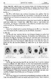 Cytoarchitektonische Untersuchungen am Striatum - Atlas of the ... - Page 7