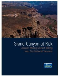 Download Grand-Canyon-at-Risk-vUS.pdf - Frontier Group