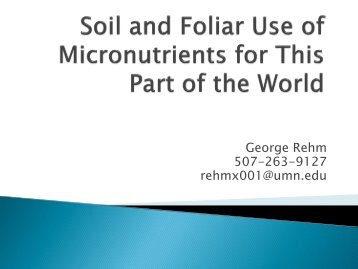 Micronutrients: Foliar or Soil Applied