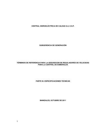 CENTRAL HIDROELÉCTRICA DE CALDAS S.A. E.S.P. ... - Chec