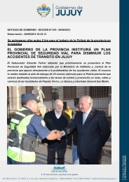 el gobierno de la provincia instituirá un plan provincial de seguridad ...