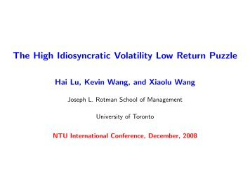 The High Idiosyncratic Volatility Low Return Puzzle