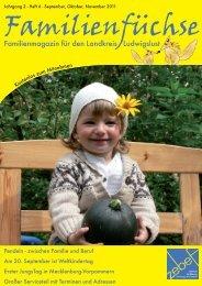 Projekte im Landkreis Pendeln - zwischen Familie ... - Familienfüchse