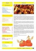 Projekte im Landkreis Pendeln - zwischen Familie ... - Familienfüchse - Seite 3