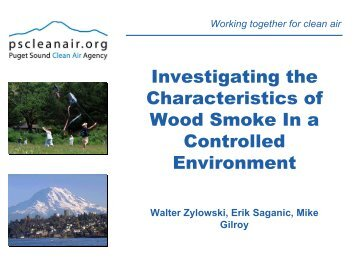 Investigating the Characteristics of Wood Smoke In a Controlled ...