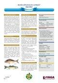 kktc-tarım sektörüne genel bakış kktc-tarım sektörüne genel bakış - Page 6