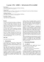 Le projet « IPv6 - ADIRE » – Infrastructure IPv6 et ... - JRES 2005