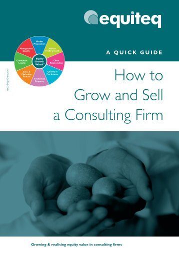 How_to_Grow_and_Sell_a_Consulting_Firm - Consulting Ideas
