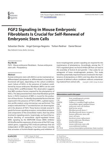 FGF2 Signaling in Mouse Embryonic Fibroblasts Is Crucial for ... - MDC