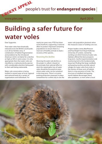 Building a safer future for water voles - People's Trust for ...