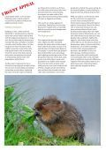 Building a safer future for water voles - People's Trust for ... - Page 2