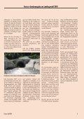 Sonderausgabe zur Landtagswahl 2010 - FAHRGAST Steiermark - Seite 5