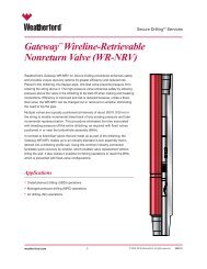 """Gatewayâ""""¢ Wireline-Retrievable Nonreturn Valve (WR-NRV)"""