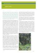 redd: la verdad en blanco y negro - Friends of the Earth International - Page 5